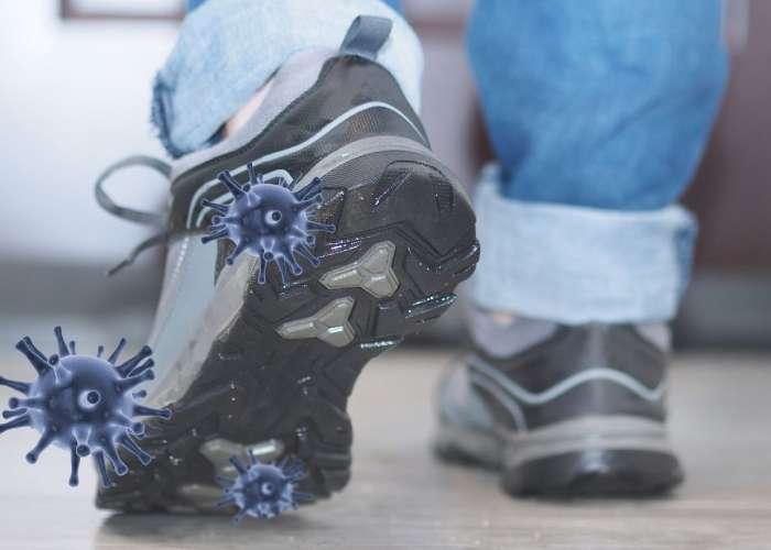 ویروس کرونا روی کفش - کفش شهپر